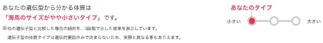 mycode-kaiba1x650